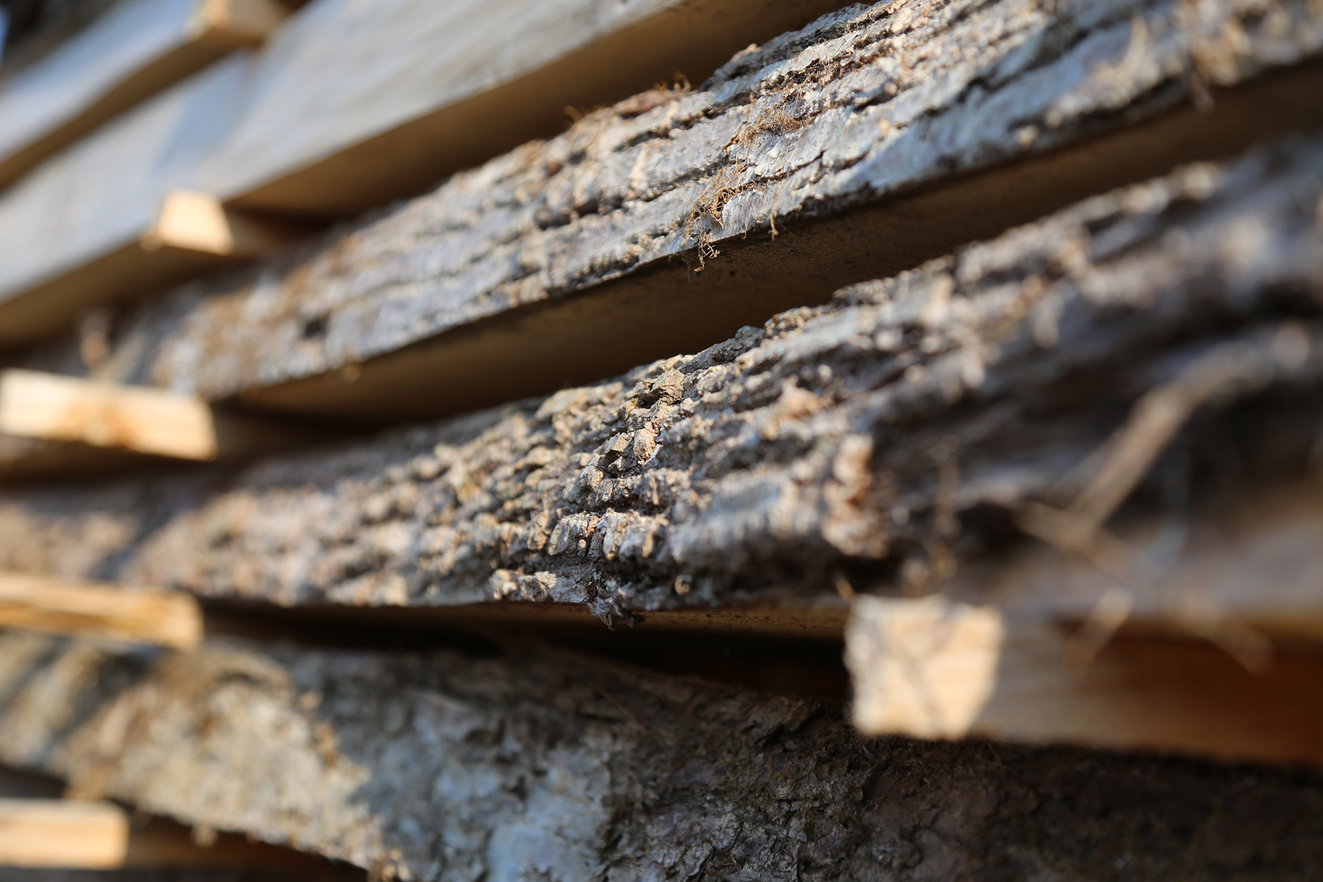 Lumber in natural drying at our outdoor park